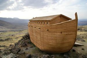 Noag se Ark